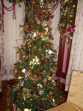 2015_Bloomfield_Christmas_21