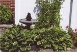 2017_Home-Garden_14