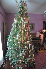 2010_Christmas_Bloomfield_10